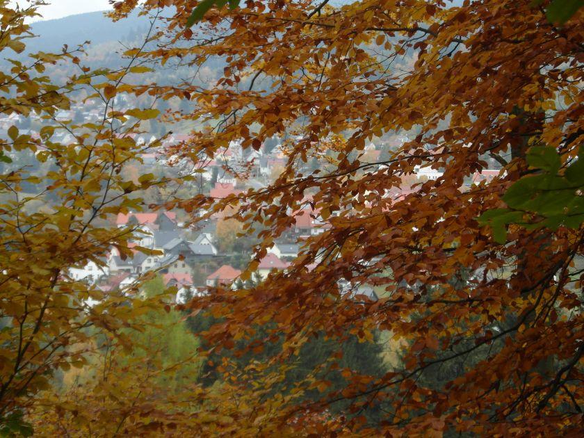 HerbstGoldlauter0003