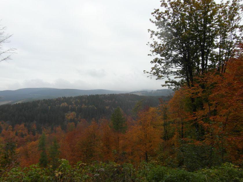 HerbstGoldlauter0005
